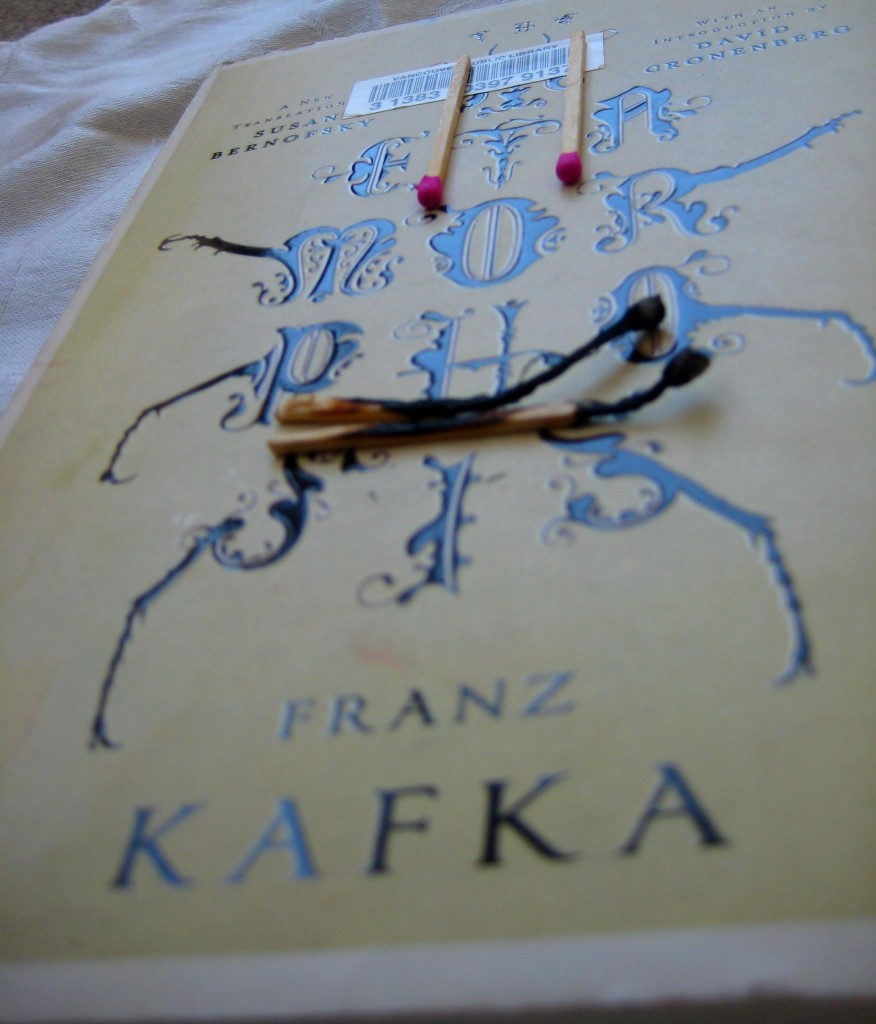 the metamorphosis book review University video reviews  video: the metamorphosis by franz kafka: book summary  franz kafka's the metamorphosis is about gregor samsa, a traveling salesman who wakes up one day to find .